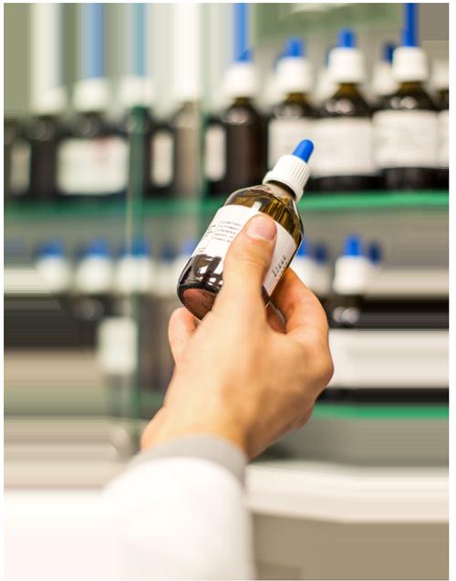 Homeopathy Website Design