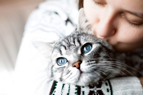 woman-home-kissing-her-lovely-fluffy-cat-scaled.jpg